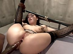 Abuse, American, Anal Sex, Ass, BDSM, Big Black Cock, Bondage, Bound, Brutal, Extreme,