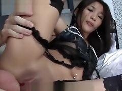 Sexo Anal, Gata, Etnia , Tailandês ,