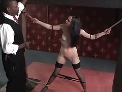 Ass, Babe, BDSM, Brunette, Fetish, Slap, Spreading, Stockings, Submissive,