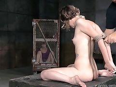 BDSM, Bondage, Captive, Cute, Fetish, Pretty, Slut, Submissive, Torture,