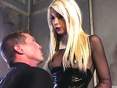 Anal Sex, Deepthroat, HD, Ladyboy, Mistress, Punishment, Shemale, Submissive, Tranny,
