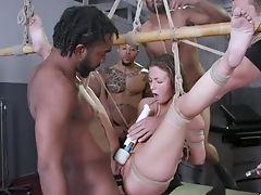 Anal Sex, Babe, Bamboo, BDSM, Bizarre, Bondage, Clamp, Domination, Double Penetration, Fetish,