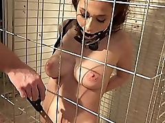Balls, Big Tits, Brunette, Cage, Domination, Dungeon, Gagging, HD, Master, Natural Tits,