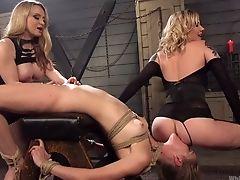 Babe, BDSM, Big Tits, Blonde, Bold, Bondage, Boobless, Femdom, Fisting, Kinky,