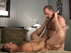 Bear, Big Cock, Blowjob, Daddies, Fucking, Hairy, Riding,