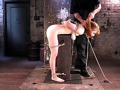 BDSM, Fetish, Hardcore, Penny Pax, Submissive, Wild,